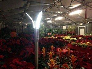 Illuminazione Giardino  Prezzi ed Offerte