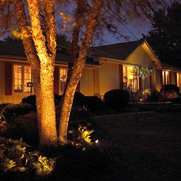 Illuminazione Piante in Giardino con Faretti