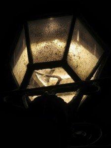 Lanterna lampione da giardino insetti