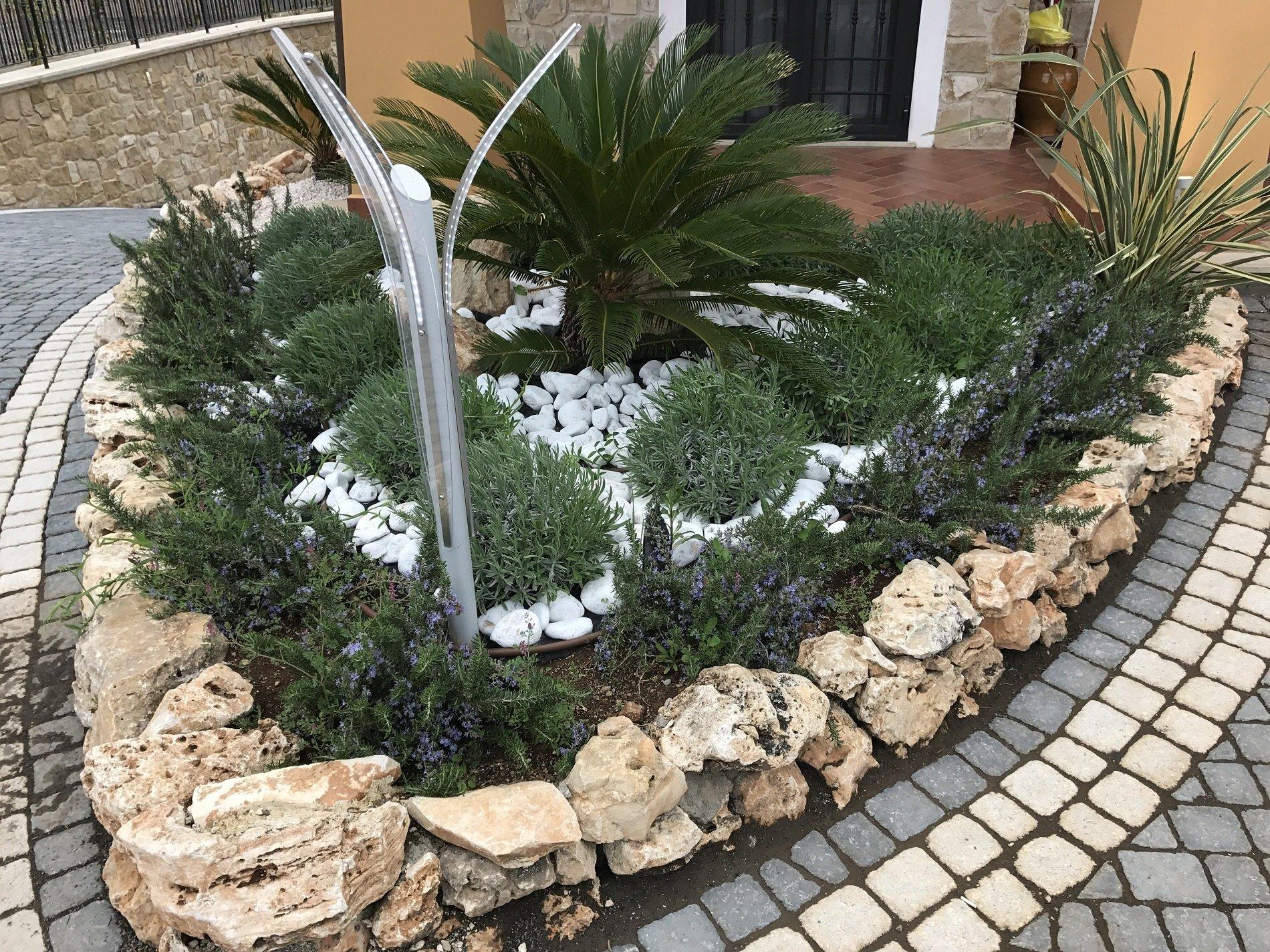 Illuminazione alberi piante e fiori illuminazione giardino - Piante per giardino ...